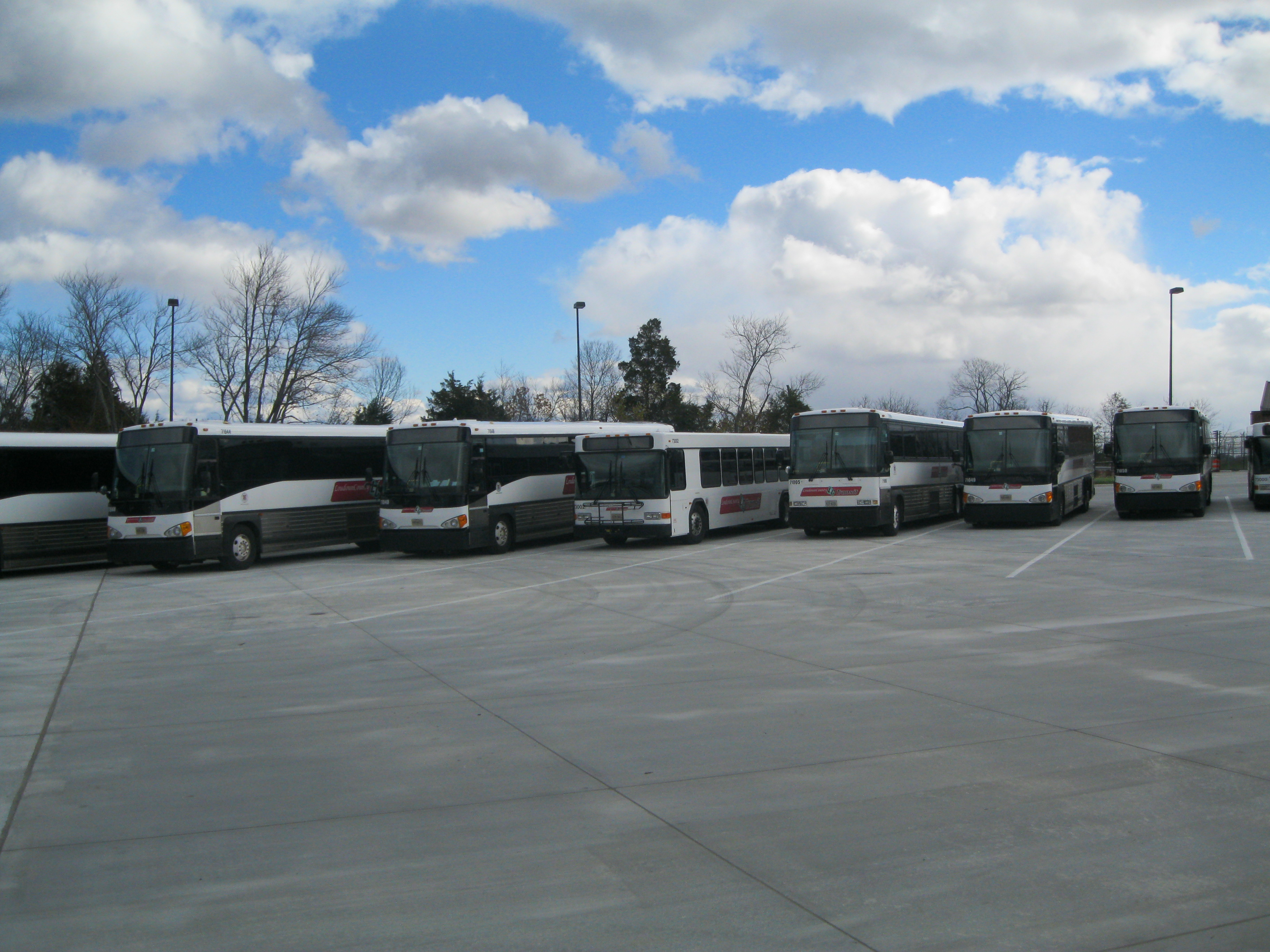 Buses parked at TMOF